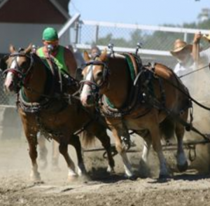 Draper Days Horse Pull- CANCELLED