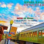 Cinco De Mayo Train