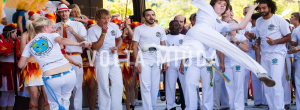 ONLINE - Brazilian Capoeira Classes