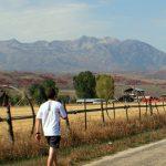 9th Annual Huntsville Marathon- CANCELLED