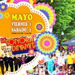 Festival Cinco De Mayo Downtown SLC
