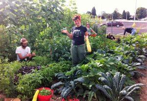 Fairpark Community Garden