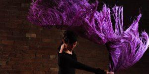 Int Flamenco on Zoom!