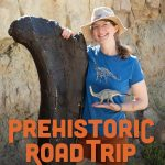 Prehistoric Road Trip: Series Preview & Panel ...