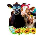 2020 Sanpete County Fair- CANCELLED