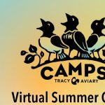 The Not So Secret Life of Animal Care Virtual Camp