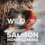 The Wild (Virtual Cinema + Q&A)