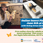 Insect Pinning Class