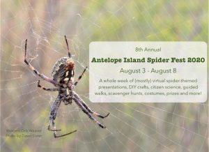 Antelope Island Spider Fest 2020- VIRTUAL