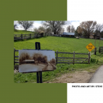 SoJo Plein Air Contest: Quick Draw from Afar