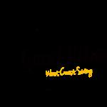 Good Vibes -West Coast Swing Beginning Level 1 Class