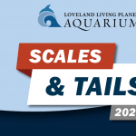 Scales & Tails fundraiser