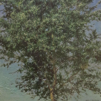 Little June Tree
