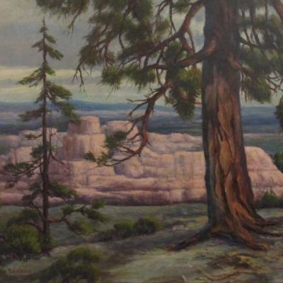 Pioneer Pine