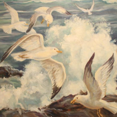 Gulls and Surf
