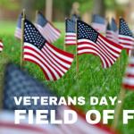Draper Veterans Day Field of Flags 2021
