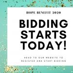 Hope Benefit Silent Auction