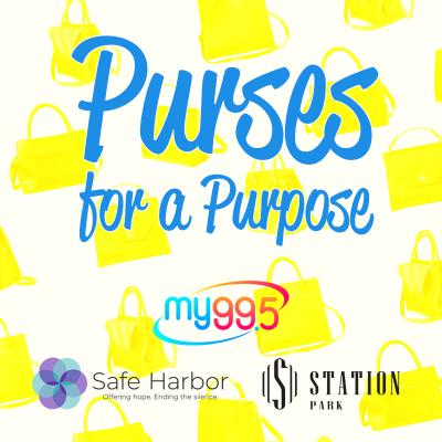 Purse for a Purpose