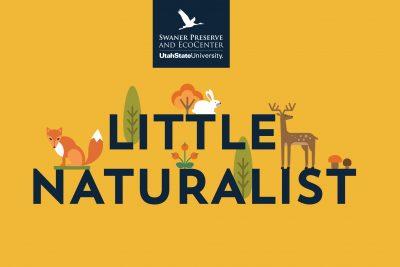 Little Naturalist