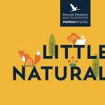 Little Naturalist
