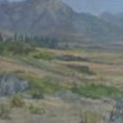 Unititled (Mountain Field)