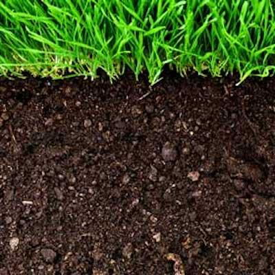 Understanding Soils for Gardeners- VIRTUAL