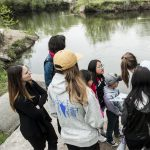 Seven Creeks | Walk Series