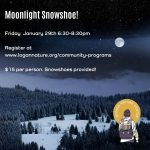 Moonlight Snowshoe