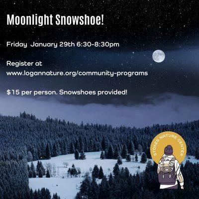 Moonlight Snowshoe