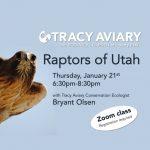 Raptors of Utah: Virtual Class