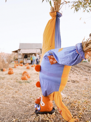 Art On the Farm: See the Scarecrows