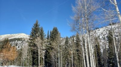 Alta Snowshoe Tour