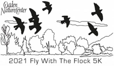 Fly with the Flock 5K - VIRTUAL