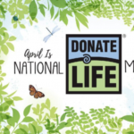 Drag Me To Life - A Fundraiser / Show For Donate Life UT