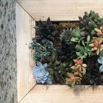 Vertical Succulent Planter - Girl's Night Out