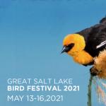 Great Salt Lake Bird Festival