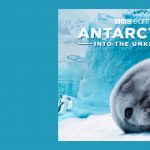 IMAX Film Premiere: Antarctica -- Into the Unknown