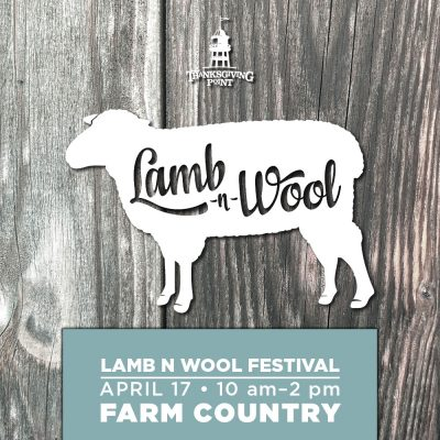 Lamb and Wool Festival 2021