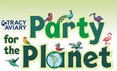 Party for the Planet 2021
