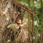 2021 Woodland Fairies at Gardner Village