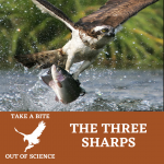 Take a Bite Out Of Science: The Three Sharps