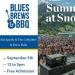 Blues, Brews & BBQ Featuring Erica Falls CANCELLED