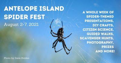 Antelope Island Spider Fest 2021