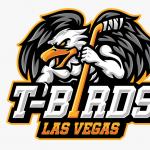 Utah Outliers VS. Las Vegas Thunderbirds