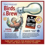 Birds & Brew: Fall Migration