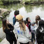 Seven Creeks   Walk Series