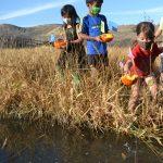 Wild Explorers Afterschool