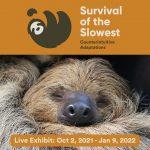 Survival of the Slowest: Live Exhibit