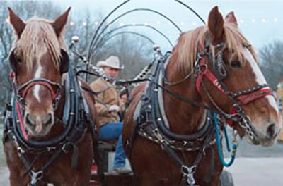 Holiday Sleigh Rides on the Farm 2021
