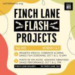Finch Lane FLASH Project: PROArtes México & Punto de Inflexión Dance Company